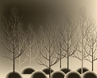 Die schöne gezeichnete Hand verzweigt sich Wald ohne Blätter Netter Herbstbaum lizenzfreie abbildung
