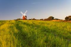 Die schöne Halnaker-Windmühle stockfoto