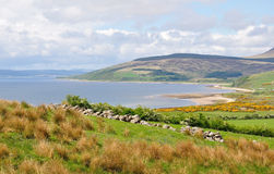 Arran, Schottland Stockfotografie