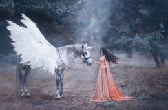 Die schöne, junge Elfe, gehend mit einem Einhorn im Wald wird sie in einem langen orange Kleid mit einem Mantel gekleidet Die Fed lizenzfreie stockbilder