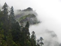 Die schöne Landschaft von Linzhi, Südost-Tibet stockbilder