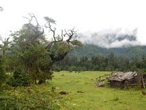 Die schöne Landschaft von Linzhi, Südost-Tibet stockfoto