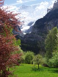 Die schöne Schweiz lizenzfreies stockbild
