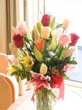 Die schönen Blumen Stockbilder