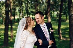 Die schönen Hochzeitspaare Lizenzfreies Stockfoto