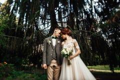 Die schönen jungen Paare, die in den Herbst gehen, parken das lächeln hell lizenzfreies stockfoto