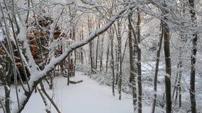 Die Schönheit des Winters Lizenzfreie Stockfotos