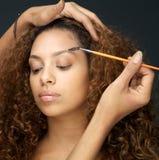 Die Schönheit, die Auge hat, bilden Anwendung vom Fachmann stockbild