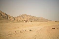 Die Schönheit von Ägypten Lizenzfreies Stockfoto