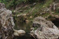 die Schönheit von einem unverschmutzten Fluss stockfotografie