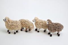 Die Schafe der Krippe Stockfotos