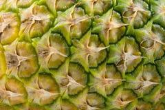 Die Schale von Ananas Stockfotografie