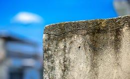 Die schimmelige Wand auf dem Hintergrund von undeutlichen Gebäuden und von blauem Himmel Stockfoto