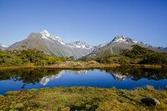 Die Schlüsselgipfel-Spur in Nationalpark Fiordland lizenzfreie stockfotografie