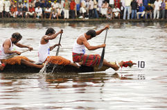 Die SchlangeRegatten von Kerala stockfoto