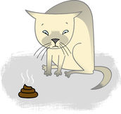 Schuldige Katze stock abbildung