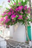 Die schmalen Straßen mit blauen Balkonen, Treppe, weißen Häusern und Blumen im schönen Dorf in Griechenland Schön Stockfotografie