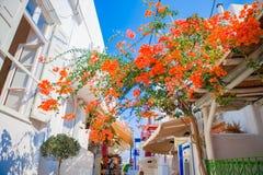Die schmalen Straßen mit blauen Balkonen, Treppe, weißen Häusern und Blumen im schönen Dorf in Griechenland Schön Stockbild