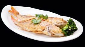 Die Schnapperfische und -brokkoli braten lokalisiert auf schwarzem backgroun Lizenzfreies Stockbild