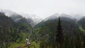 Die Schnee-mit einer Kappe bedeckten Spitzen von Waldbergen und von grünem Gras auf den Banken des Stromes stockfotos