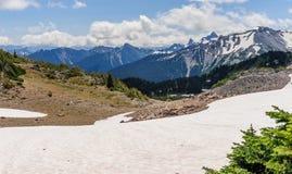 Die schneebedeckten Flanken vom Mount Rainier lizenzfreies stockbild