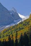 Die schneebedeckten Spitzen des Kaukasus Stockfoto