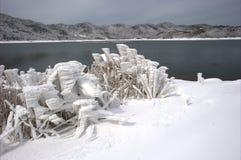 Die Schneelandschaft stockbilder