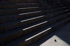 Die Schritte des Steintreppenhauses, belichtet durch einen Strahl der Sonne, in der Basis der Leiter ist eine orange Orange Lizenzfreie Stockbilder