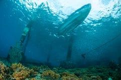 Die Schulung fischt unter dem Boot in Gili, Lombok, Nusa Tenggara Barat, Indonesien-Unterwasserfoto Stockfotografie