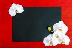 Die schwarze Größe des Rechtecks A4 auf einem roten hölzernen Hintergrund, der mit weißer Orchidee verziert wird, blüht Stockfoto