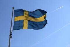 Die schwedische Flagge stockfotos