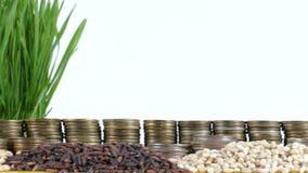 Die Schweiz fahnenschwenkend mit Stapel Geldmünzen und Stapel des Weizens stock video