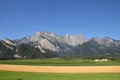Die Schweiz-Landwirtschaft Lizenzfreies Stockfoto
