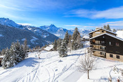 Die Schweizer Alpen Stockbild