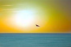 Die Seeadler Drachen über dem Indischen Ozean Lizenzfreies Stockbild