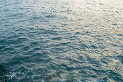 Die Seeansicht Seestern- und -rollensteine Die Abendsonne wird im Wasser reflektiert Lizenzfreie Stockfotos