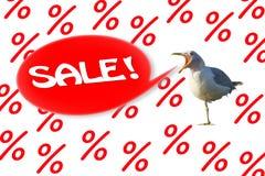 Die Seemöwe schreit 'Verkauf 'auf einem Hintergrund von den Prozenten stockbilder