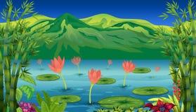 Die Seerosen und die Blumen am See Stockfotografie