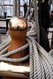 Die Seesitzung 11 Lizenzfreie Stockbilder