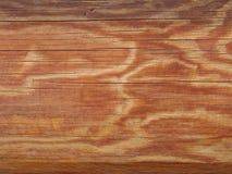 Die seitliche Oberfläche von trockenen Klotz ohne Barke lizenzfreies stockfoto