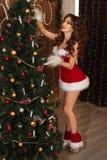 Die sexy Frau, die als Sankt gekleidet wird, verziert einen Weihnachtsbaum Stockbilder