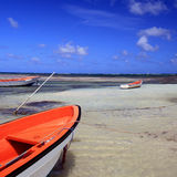 Die Skiffs von Martinique Stockfotografie