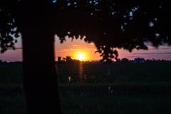Die Sonne Stockbild