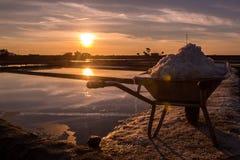 Die Sonne deckt Salz auf Lizenzfreies Stockbild