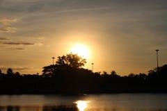 Die Sonne fällt stockbilder