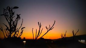 Die Sonne gegangen Lizenzfreie Stockfotografie