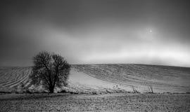 Die Sonne hinter den Wolken auf einem Feld im Winter Lizenzfreies Stockfoto