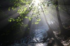Die Sonne ` s Strahlen belichten die dunkle Schlucht Lizenzfreie Stockbilder