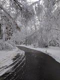 Die Sonne scheint das Gleis, Schnee, Holz stockbilder