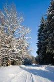 Die Sonne scheint das Gleis, Schnee, Holz Stockfotos